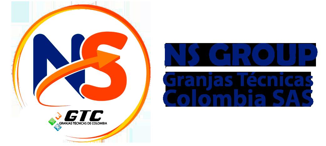 Ns Group